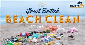Image: The Great British Beach Clean and Survey